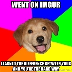 Advice Dog - went on imgur learned the difference between your and you're the hard way