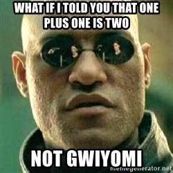 what if i told you matri - what if i told you that one plus one is two not gwiyomi