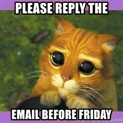 Apologetic Puss In Boots - please reply THE EMAIL BEFORE FRIDAY