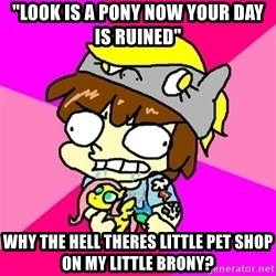 "rabid idiot brony - ""lOOK IS A PONY NOW YOUR DAY IS RUINED"" WHY THE HELL THERES little pet shop on my little brony?"