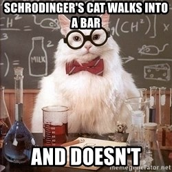 Chemistry Cat - SCHRODINGER'S CAT WALKS INTO A BAR and doesn't