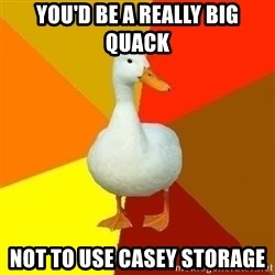 Technologically Impaired Duck - You'd be a really big quack not to use casey storage