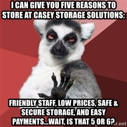 Chill Out Lemur - I can give you five reasons to store at casey storage solutions: friendly staff, low prices, safe & secure storage, and easy payments...wait, is that 5 or 6?