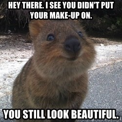 Seemingly Innocent Quokka - Hey there. I see you didn't put your make-up on. you still look beautiful.