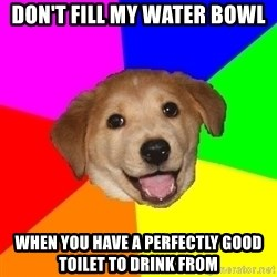 Advice Dog - don't fill my water bowl when you have a perfectly good toilet to drink from