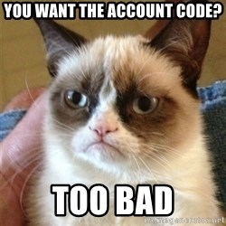 Grumpy Cat  - yOU WANT THE ACCOUNT CODE? tOO BAD