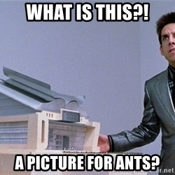 center for ants - What is this?! A picture for ants?