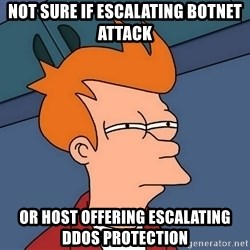 Futurama Fry - not sure if escalating botnet attack or host offering escalating ddos protection