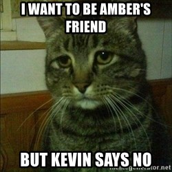 Depressed cat 2 - I WANT TO BE AMBER'S FRIEND BUT KEVIN SAYS NO