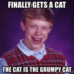 Bad Luck Brian - finally gets a cat the cat is the grumpy cat