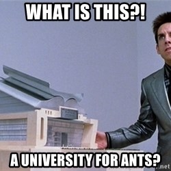 center for ants - What is this?! A University for ants?