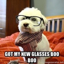 hipster dog -   got my new glasses boo boo
