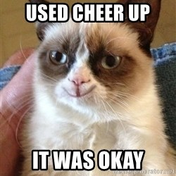 Grumpy Cat Happy Version - Used Cheer Up  It was okay
