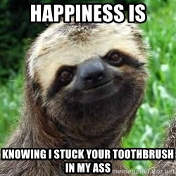 Sarcastic Sloth - happiness is knowing I stuck your toothbrush in my ass