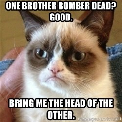 Grumpy Cat  - One brother bomber dead?  Good.   Bring me the head of the other.
