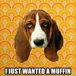 SAD DOG -  I just wanted a muffin