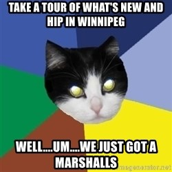 Winnipeg Cat - take a tour of what's new and hip in winnipeg well....um....we just got a marshalls