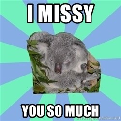 Clinically Depressed Koala - I MISSY  YOU SO MUCH