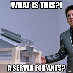 center for ants - What is this?! A server for ants?