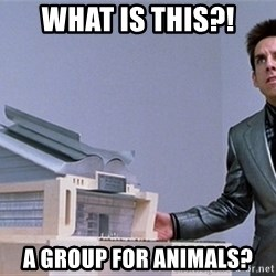 center for ants - What is this?! A group for animals?