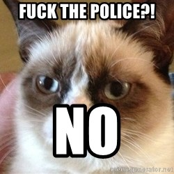 Angry Cat Meme - fuck the police?! no