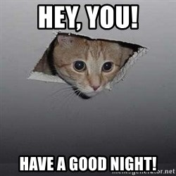 Ceiling cat - Hey, you! Have a good night!