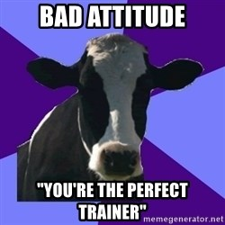 "Coworker Cow - Bad attitude ""yOU'RE THE PERFECT TRAINER"""