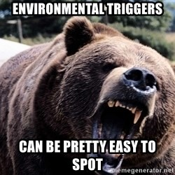 Bear week - environmental Triggers can be pretty easy to spot