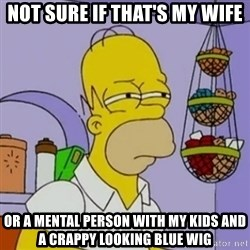 Simpsons' Homer - not sure if that's my wife or a mental person with my kids and a crappy looking blue wig
