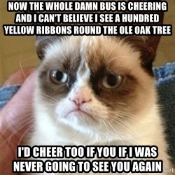 Grumpy Cat  - Now the whole damn Bus is cheering and I can't believe I see a hundred yellow riBbons round the olE oak Tree I'd cheer too if you If I was never going to see you again