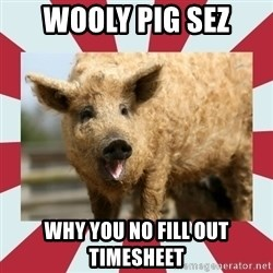 Wooly Pig - WOOLY PIG SEZ WHY YOU NO FILL OUT TIMESHEET