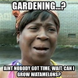 Ain't Nobody got time fo that - Gardening...? Aint nobody got time, wait, can i grow watamelons?