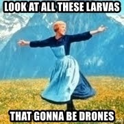 Look at all these - Look at all these larvas that gonna be drones