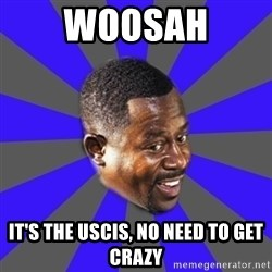 Bad Boys(Bad Guy) - Woosah it's the uscis, no need to get crazy