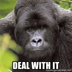 Grad Student Gorilla -  Deal with it