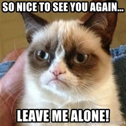 Grumpy Cat  - So nice to see you again... leave me alone!