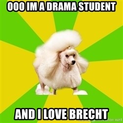 Pretentious Theatre Kid Poodle - OOO IM A DRAMA STUDENT AND I LOVE BRECHT