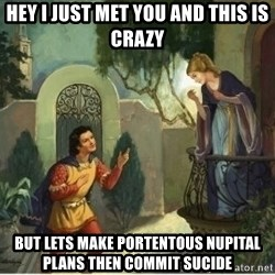 hey i just met you and this is crazy but lets make portentous nupital plans then commit sucide romeo and juliet meme generator,Romeo And Juliet Meme