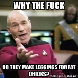 Why the fuck - Why the fuck do they make leggings for fat chicks?