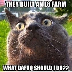 Confused Cat - They built an l8 farm what dafuq should i do??