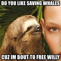 Whisper Sloth - DO YOU LIKE SAVING WHALES CUZ IM BOUT TO FREE WILLY