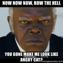 django unchained samuel l jackson - Now now now, how the hell You gone Make me look like angry cat?