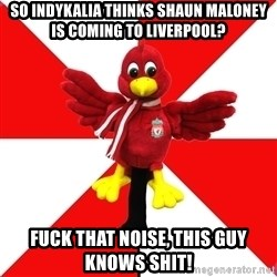 Liverpool Problems - So INDYKALIA THINKS SHAUN MALONEY IS COMING TO LIVERPOOL? FUCK THAT NOISE, THIS GUY  KNOWS SHIT!