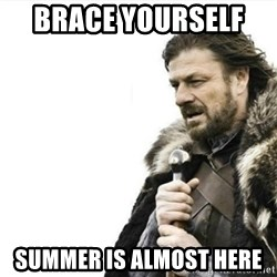 Prepare yourself - BRACE YOURSELF   summer is almost here