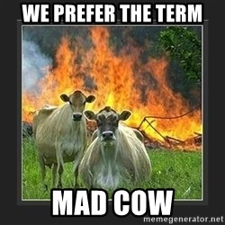 Evil Cow  - We prefer the term mad cow