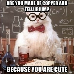 Chemistry Cat - Are you made of Copper and Tellurium? Because you are cUte