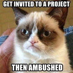 Grumpy Cat  - get invited to a project  then ambushed