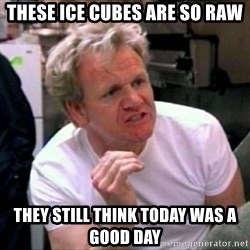 Gordon Ramsay - These ice cubes are so raw They still think today was a good day