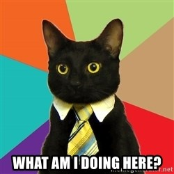 Business Cat -  What am I doing here?