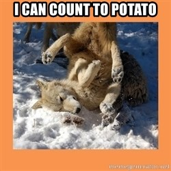 Moon Moon - I can count to Potato